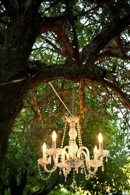 brides.prestonbailey.com chandelier in a tree