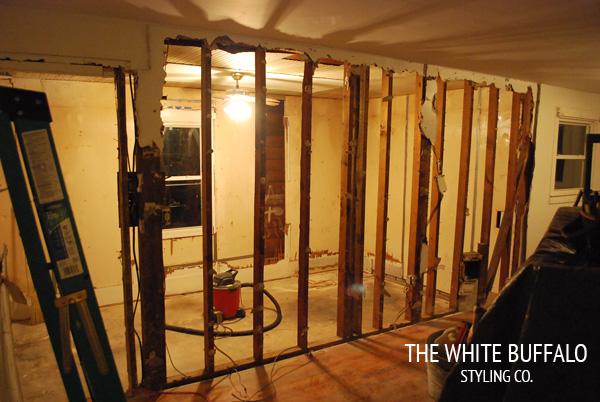 kitchen-wall-in-progress