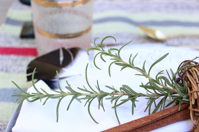 Rosemary for Christmas